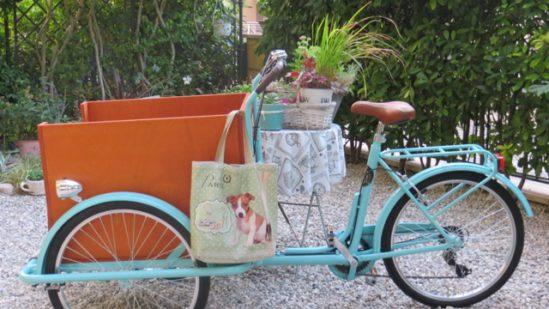 triciclotto alla partenza
