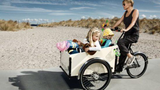 CargoBike a 3 Ruote per un più comodo trasporto. Per bambini, animali e Merci