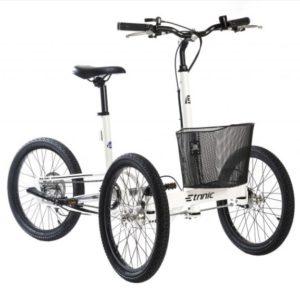 Cargo bike City Trike