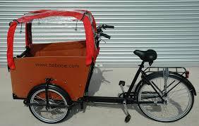 Babboe-cargobike-trasporto animali-trasporto bambini-16