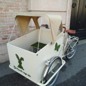 Trikego box artigianale colore beige