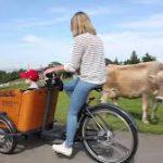 babboe-cargobike-trasporto bambini-4 bambini-bambini a bordo