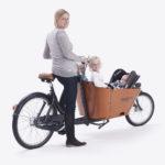 Babboe-cargobike-trasporto animali-trasporto bambini-02