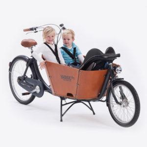 CargoBike a 2 Ruote per trasporto bambini e animali