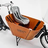 Babboe-cargobike-trasporto animali-trasporto bambini-07
