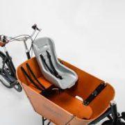 Babboe-cargobike-trasporto animali-trasporto bambini-08