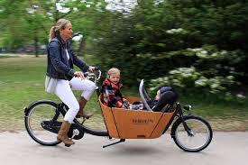 Babboe-cargobike-trasporto animali-trasporto bambini-12