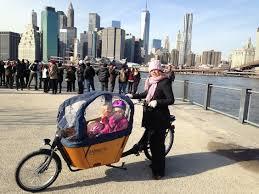 Babboe-cargobike-trasporto animali-trasporto bambini-13