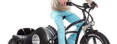 Beach-Vintage-fat-sidecar- bici con passeggero-03