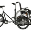 Flex cargo bike-trasporto sedia a rotelle-carrozzina-02