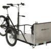 Flex cargo bike-trasporto sedia a rotelle-carrozzina-04