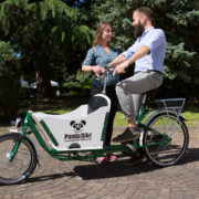 PANDA BIKE-MODELLO SAETTA-trasporto bambini-trasporto merci-trasporto spesa-trasporto animali-03