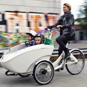 Cargo bike Triobike Mono