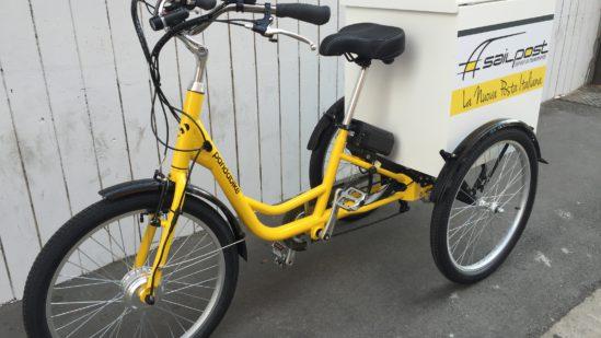 triciclo-trasporto bambini-trasporto merci-02