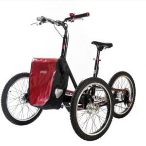 Cargo bike Adventure Trike No-electric