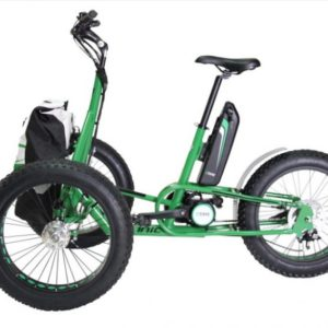 Cargo bike Fat Trike Electric