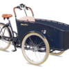 -johnny loco-trasporto bambini-trasporto animali-pedalata assistita-elettrica-01