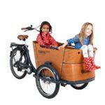 babboe-cargobike-trasporto bambini-4 bambini-bambini-elettrica-04