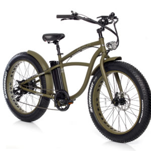 Beach Fat Bike elettrica