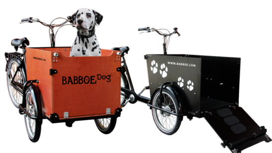 Babboe Dog (10)