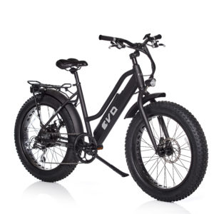 Evo Fat Bike elettrica