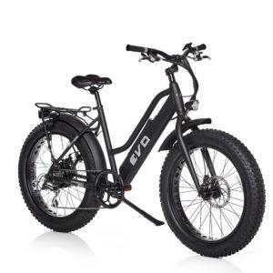 Evo Fat Bike elettrica