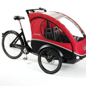 Cargo bike Lite elettrica