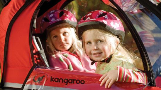 Kangaroo_luxe_ Children_window