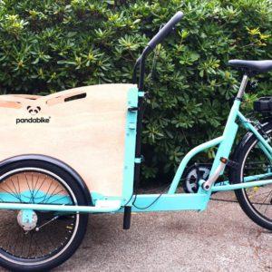Cargo bike Minivan